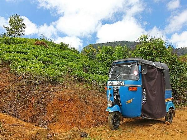 udaipur taxi car service