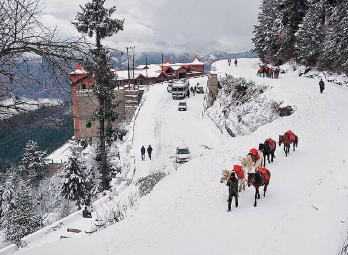 car hire shimla